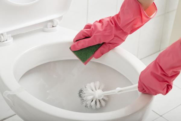 Cómo eliminar el mal olor en el baño: limpie el inodoro regularmente