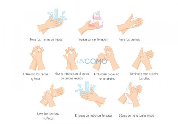 ¿El alcohol desinfecta las manos? - Cómo desinfectar adecuadamente tus manos
