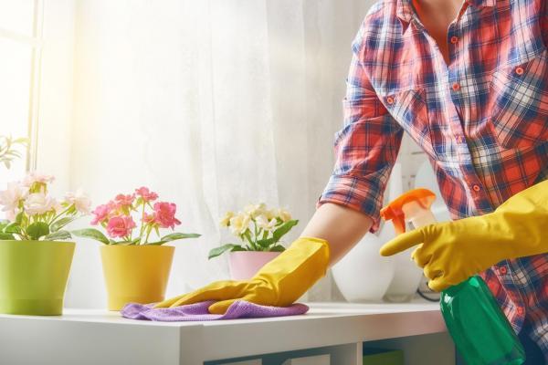 Cómo desinfectar su hogar contra bacterias y virus