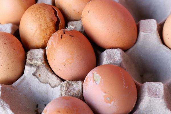 Cómo saber si un huevo está fresco - cómo saber si un huevo está podrido rápidamente