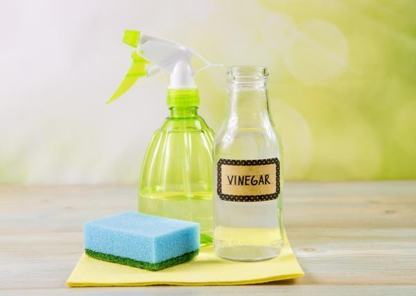 Cómo quitar la cal del vidrio de la ducha - Vinagre blanco para quitar la cal del vidrio de la ducha