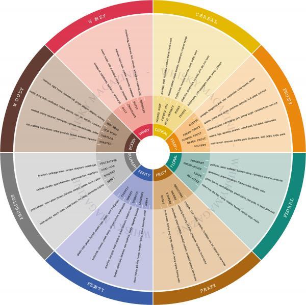 Cómo elegir el whisky adecuado para ti: el olor del whisky