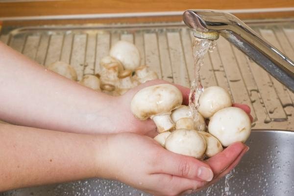 Cómo mantener los champiñones frescos - Paso 4