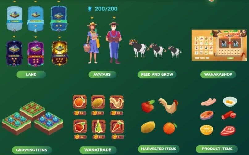 elementos del juego de granja wanaka
