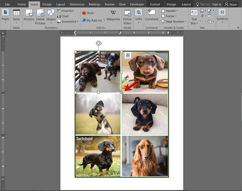 insertar fotos en un collage