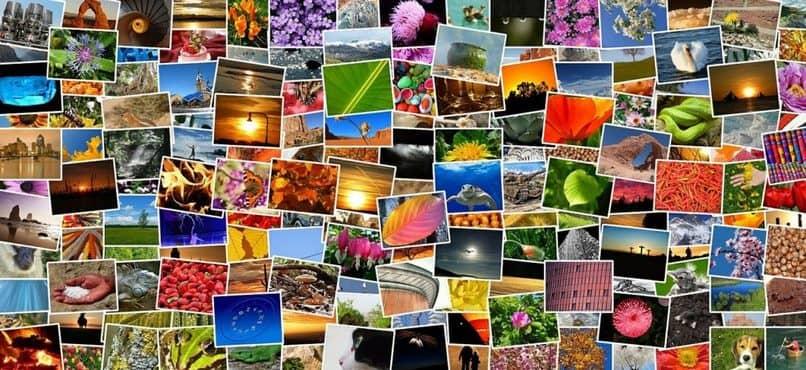 Cómo hacer un collage en Word: pasos para crear un álbum de fotos
